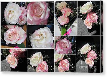 Pink Rose. Canvas Print by Joyce Woodhouse