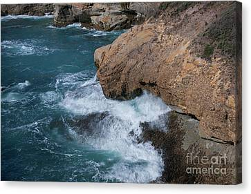 Point Lobos Canvas Print by Glenn Franco Simmons