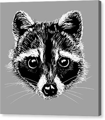 Raccoon Canvas Print by Masha Batkova