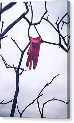 Red Glove Canvas Print by Joana Kruse