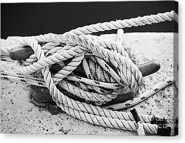 Ropes On Cleat Canvas Print