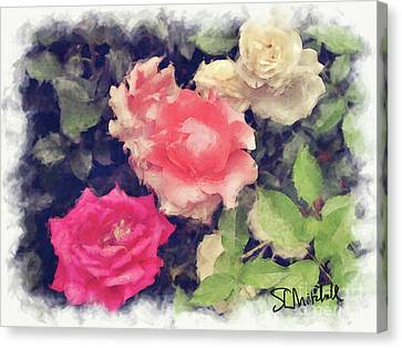 3 Roses Canvas Print by Stephen Mitchell