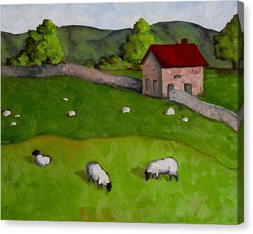 3 Sheep On The Farm Canvas Print by Amy Higgins
