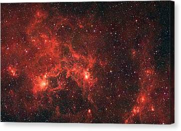 The Dragon Fish Nebula Canvas Print by American School