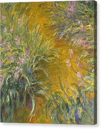The Path Through The Irises Canvas Print by Claude Monet