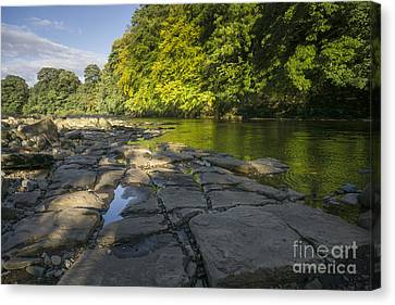 The River Swale Canvas Print by Nichola Denny