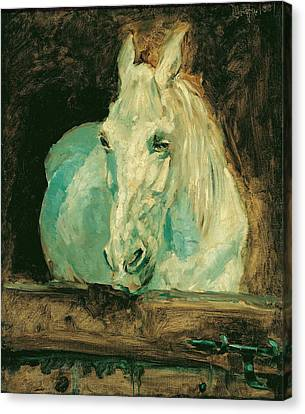 The White Horse Gazelle Canvas Print by Henri de Toulouse-Lautrec