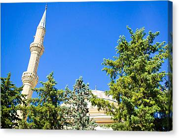 Turkish Mosque Canvas Print by Tom Gowanlock
