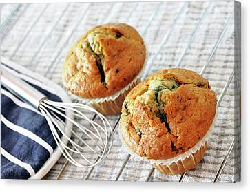 Two Blueberry Muffins Canvas Print by Dutourdumonde Photography