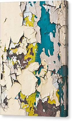 Peeling Paint Canvas Print