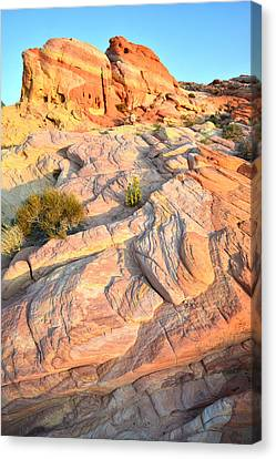 Valley Of Fire Canvas Print by Ray Mathis