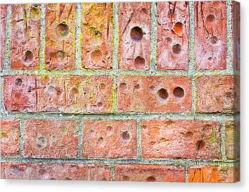 Unrest Canvas Print - Brick Wall by Tom Gowanlock