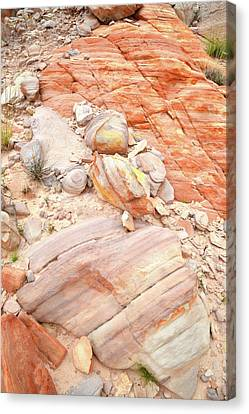 Canvas Print featuring the photograph Multicolored Sandstone In Valley Of Fire by Ray Mathis
