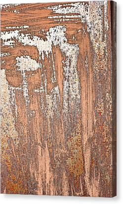 Rusty Metal Canvas Print by Tom Gowanlock