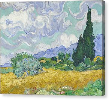 A Wheatfield, With Cypresses  Canvas Print by Vincent Van Gogh