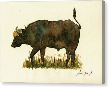 African Buffalo Watercolor Painting Canvas Print
