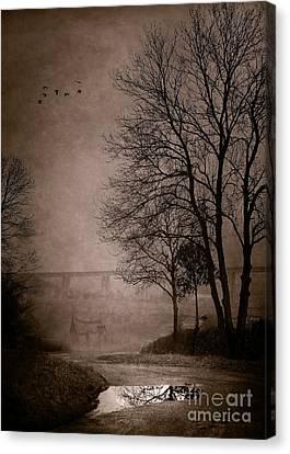 After Rain Canvas Print by Svetlana Sewell
