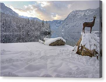 Canvas Print featuring the photograph Alpine Winter Reflections by Ian Middleton