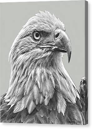 American Bald Eagle Canvas Print by Larry Linton