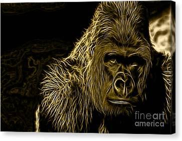Ape Collection Canvas Print
