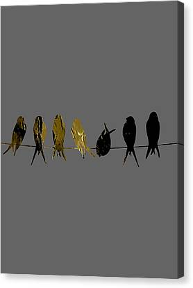 Birds On A Wire Collection Canvas Print by Marvin Blaine