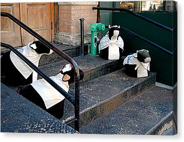 Canvas Print featuring the photograph 4 Cows On A Stoop by JoAnn Lense