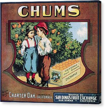 Crate Label, 20th Century Canvas Print by Granger