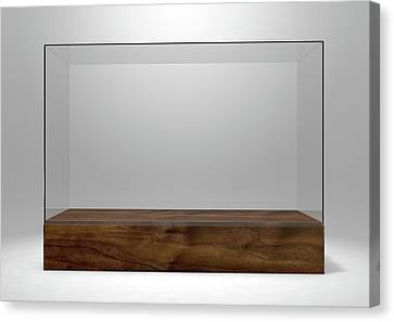 Glass Display Case Canvas Print by Allan Swart