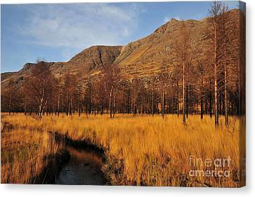 Glen Torridon Canvas Print