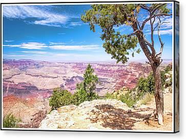 Grand Canyon, Arizona Canvas Print by A Gurmankin