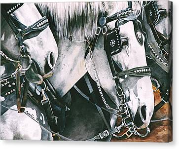 4 Grays Canvas Print by Nadi Spencer