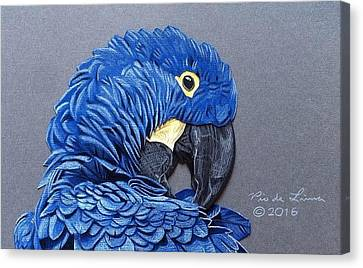 Macaw Canvas Print - Hyacinth Macaw by Pio De Lima