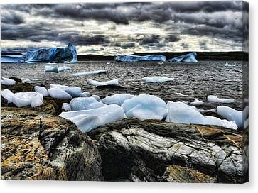 Icebergs At St. Anthony Canvas Print by Steve Hurt