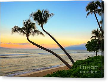 Canvas Print featuring the photograph Island Sunrise by Kelly Wade
