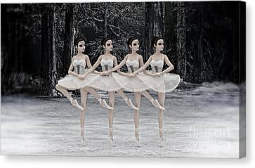 4 Little Swans Canvas Print by Methune Hively
