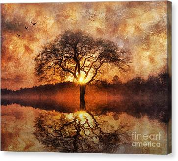 Canvas Print featuring the digital art Lone Tree by Ian Mitchell