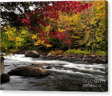 Ontario Autumn Scenery Canvas Print by Oleksiy Maksymenko