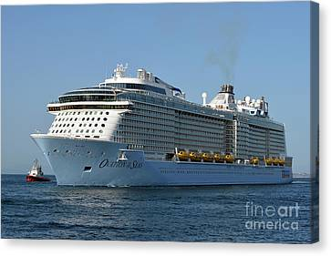 Ovation Of The Seas  Canvas Print