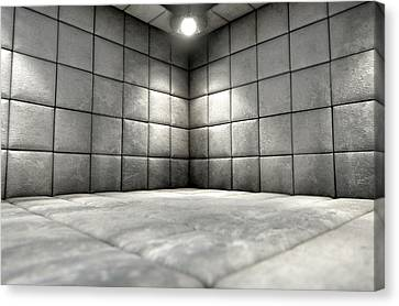 Padded Cell Dirty Canvas Print by Allan Swart