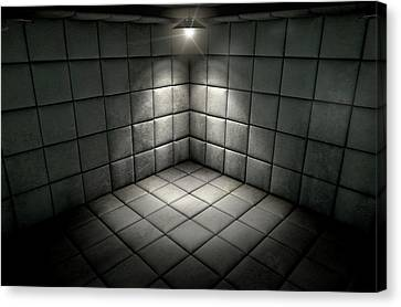Padded Cell Dirty Spotlight Canvas Print by Allan Swart