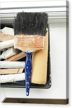 Ledge Canvas Print - Paint Brushes by Tom Gowanlock