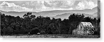 Pasture Field And Barn Canvas Print