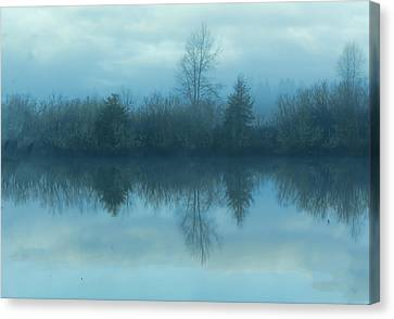 Reflections Canvas Print by Cathy Anderson