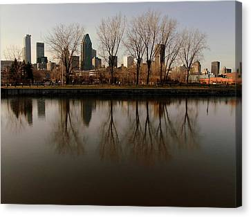 Reflections  Canvas Print by Robert Knight