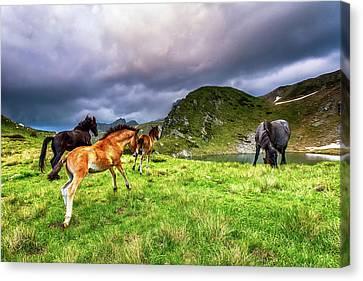 Rila Mountain Canvas Print