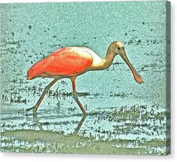 Canvas Print featuring the digital art 4- Roseate Spoonbill by Joseph Keane