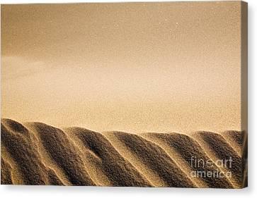 Sand Dunes Canvas Print