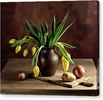 Still Life With Tulips Canvas Print by Nailia Schwarz