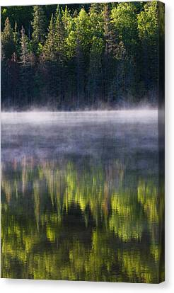 Summer Morning Canvas Print by Mircea Costina Photography