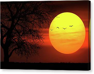 Canvas Print featuring the photograph Sunset by Bess Hamiti